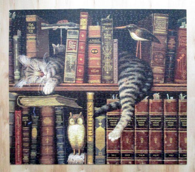 CatBooks7