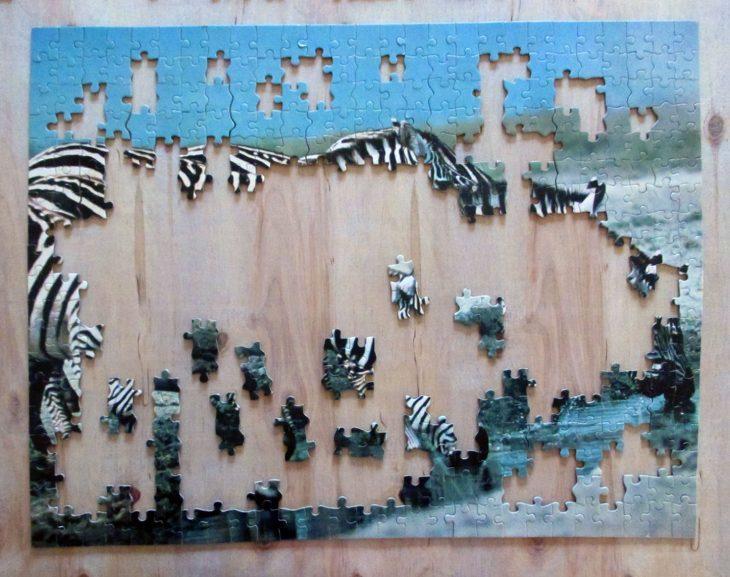 Eight Zebra2