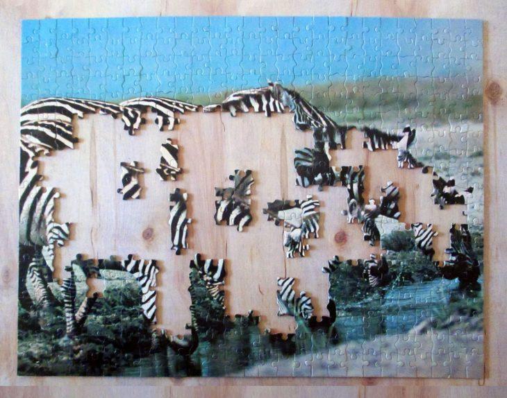 Eight Zebra3