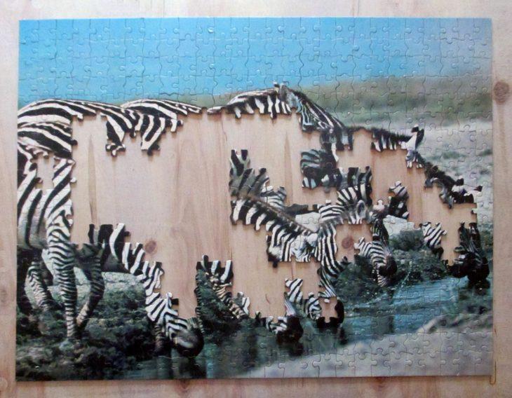 Eight Zebra4