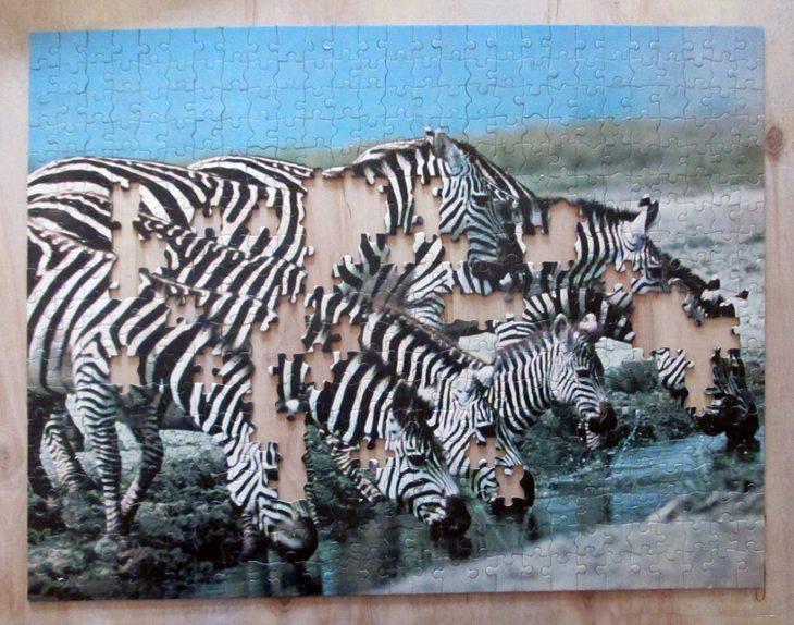 Eight Zebra5