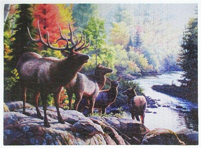 Elk-14