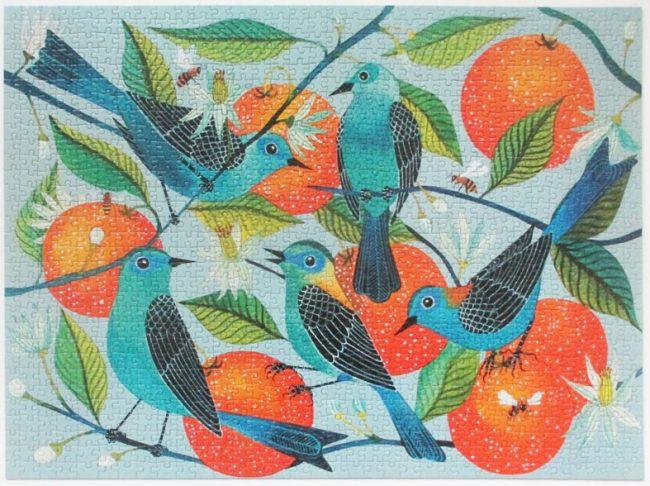 birds oranges 11