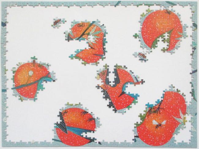 birds oranges 4