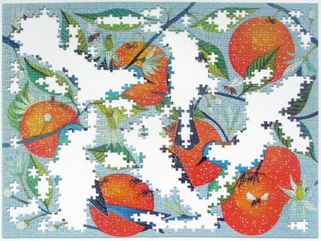 birds oranges 7