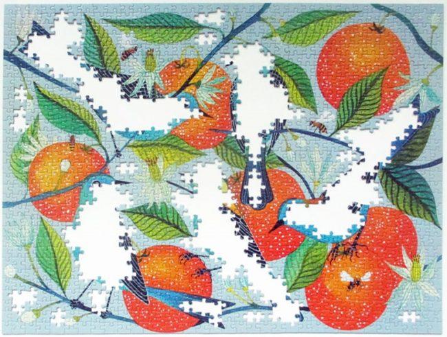 birds oranges 8