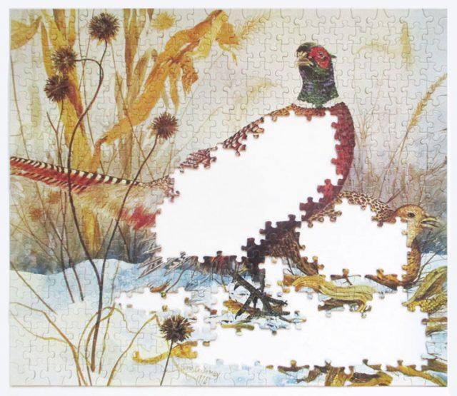 pheasants-5