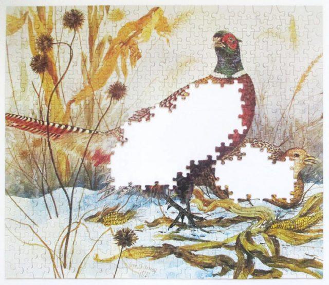 pheasants-6