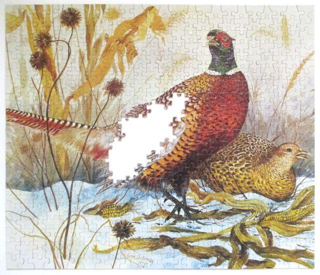 pheasants-8
