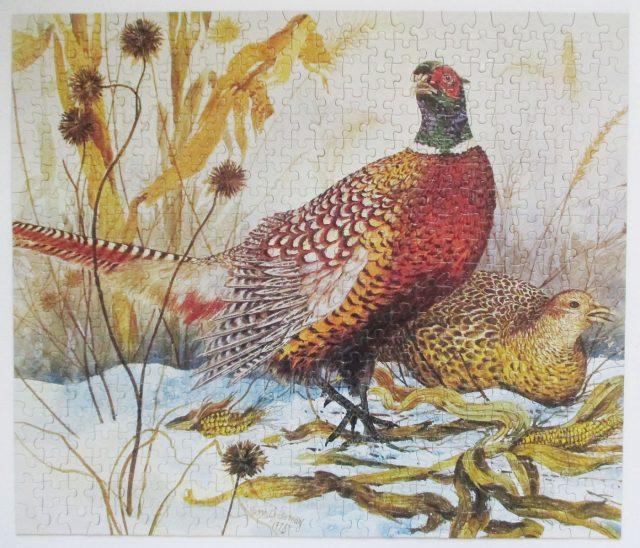 pheasants-9